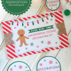 DIY Gingerbread Cookie Decorating Kit